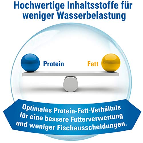 TetraMin (Hauptfutter für alle Zierfische in Flockenform, für ein langes und gesundes Fischleben und klares Wasser, plus Präbiotika für verbesserte Körperfunktionen und Futterverwertung), 1 Liter Dose - 2